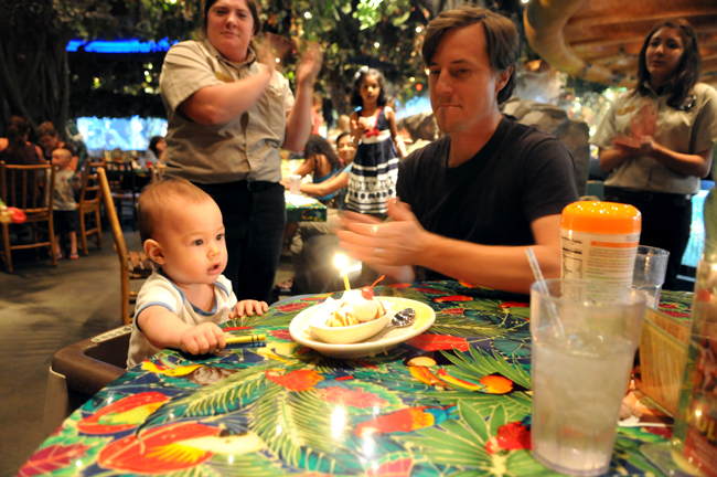 1 year old birthday